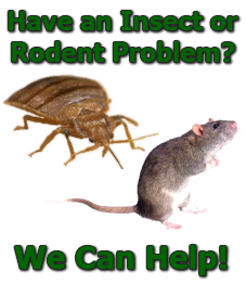 Gorham, Maine, Insect Rodent Prevention