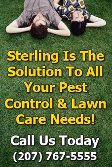 alt textGorham, Maine Pest Control Lawn Care